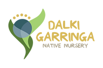Dalk Garringa Logo - Landscape - No Back