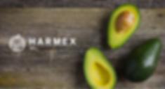 Harmex. Proudly created with Wix.com's Company logo