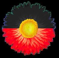 aborginal flower flag 3.png
