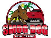 Smog Dog.jpg