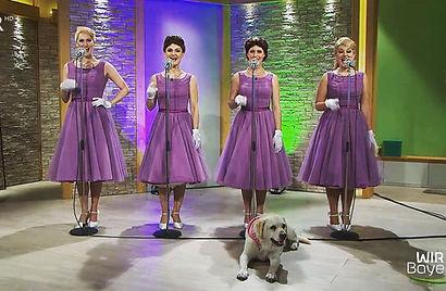 Tonic Sisters BR Fernsehen Wir in Bayern