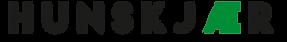 Logo æ.png