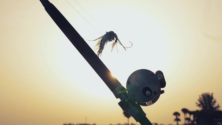 DDR Fishing