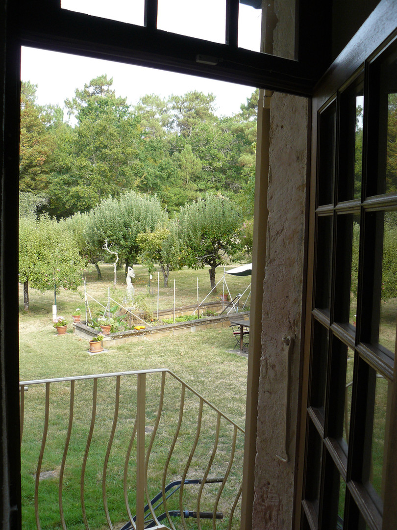 View to orchard from kitchen