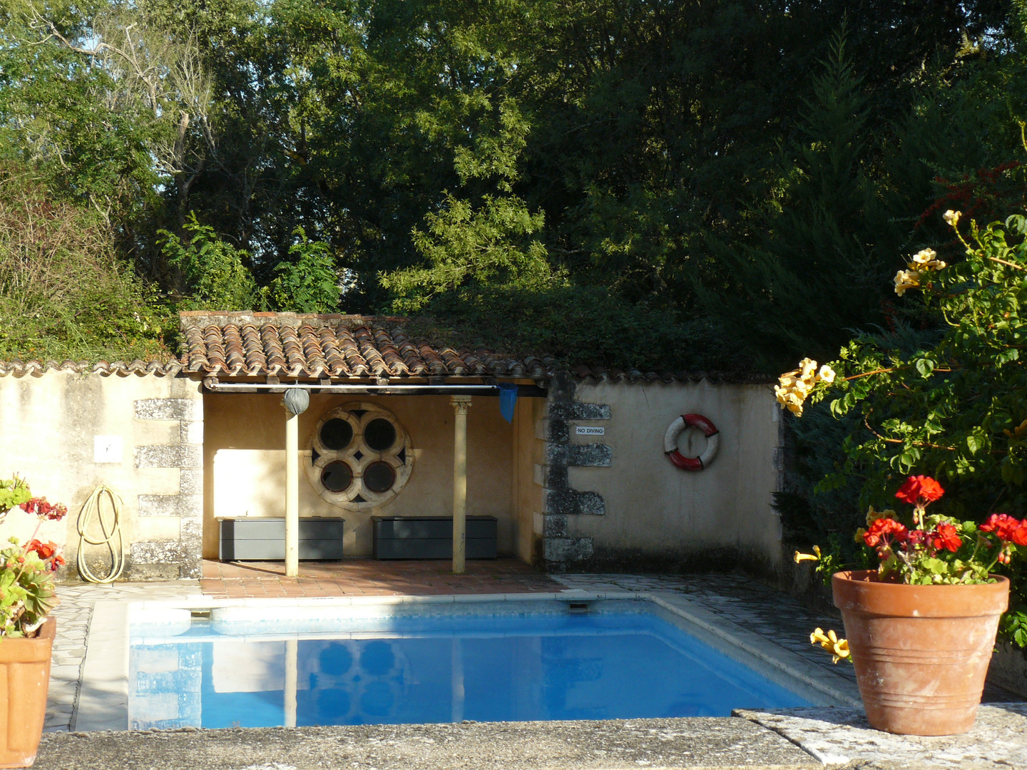 Les Amandiers swimming pool (1)