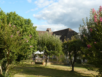 The Orchard (1)