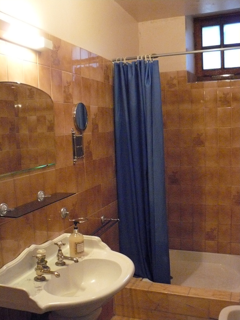 Shower room ground floor
