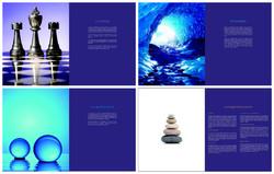Veno Image Campaign, 2008