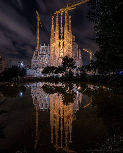 Reflections at La Sagrada Familia