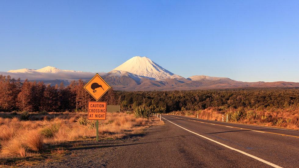 Kiwi Road Sign and volcano Mt. Ngauruhoe