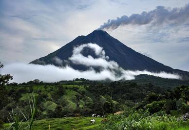 SERPENTINE MIST // COSTA RICA