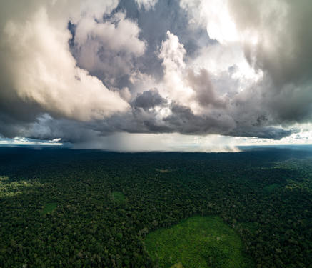 AMAZON DELUGE // PERU