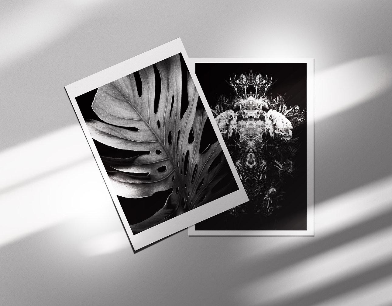 postcardsets1.jpg