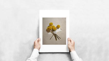 daytime3_printsample.jpg