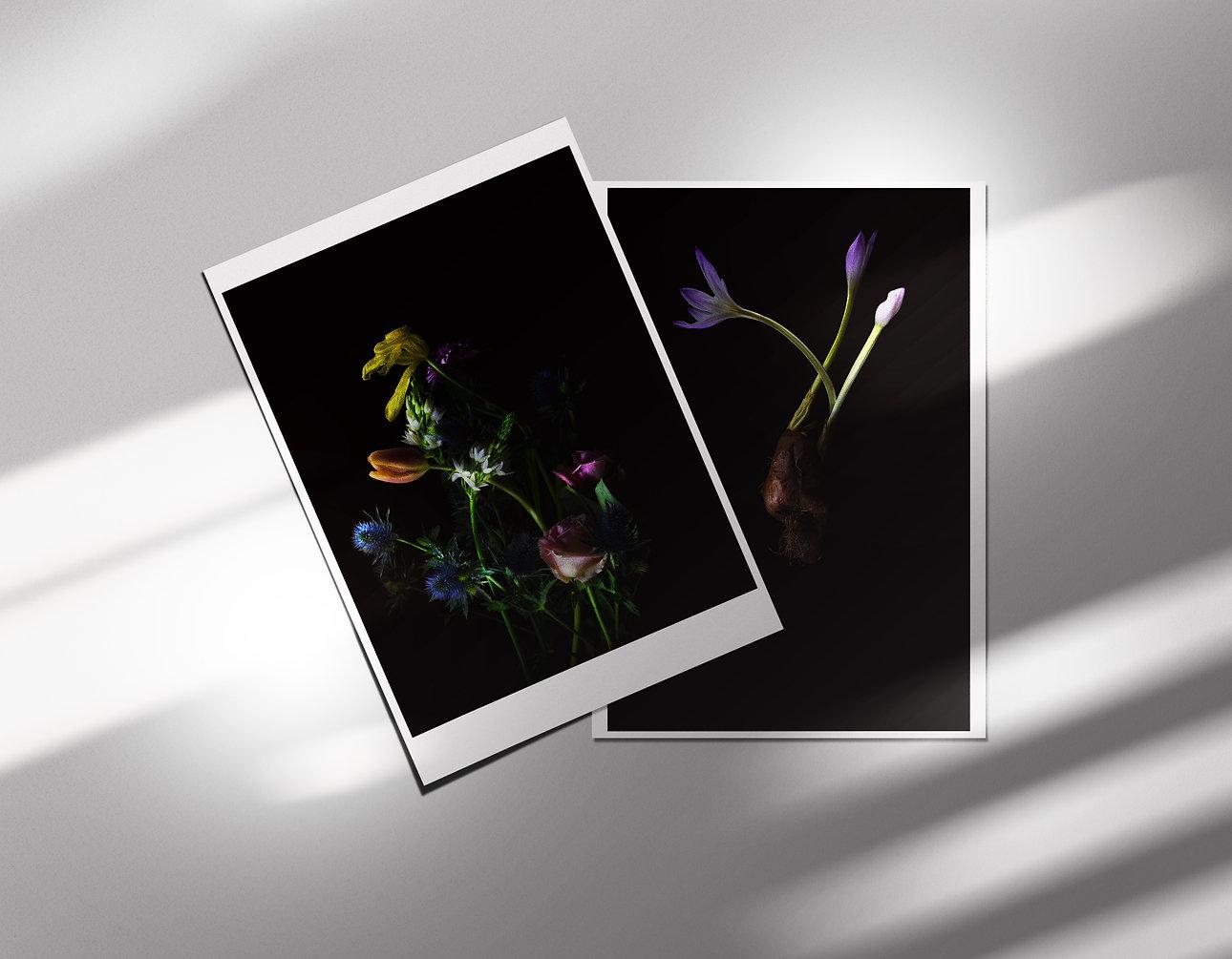 postcardsets4.jpg