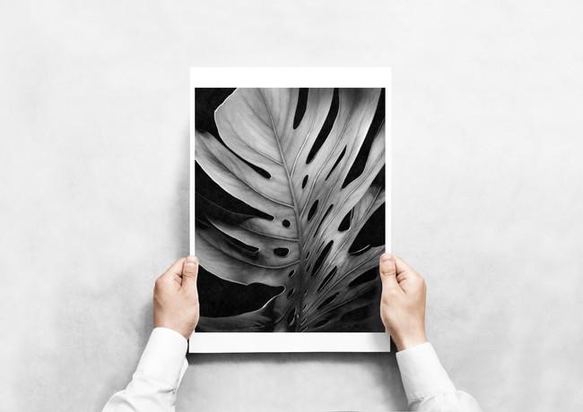 leaf a3.jpg