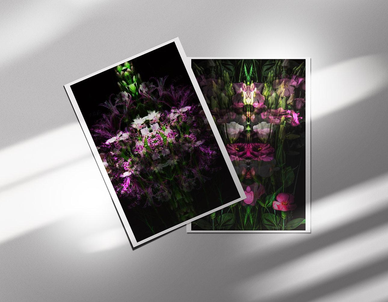 postcardsets2.jpg