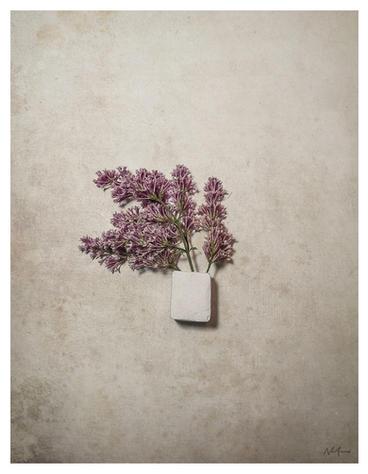 blossom_two.jpg
