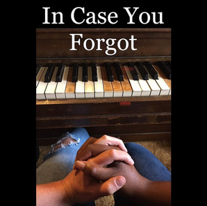 In Case You Forgot, a new folk pop musical
