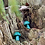 Thumbnail: Malachite Mushroom