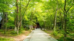 軽井沢旧道