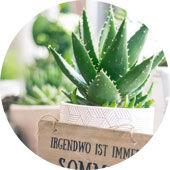 Topfpflanzen und Deko für Haus und Garten von Blumenwiese Lage