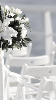 gallery_ wedding_planner_st_barth_bucket