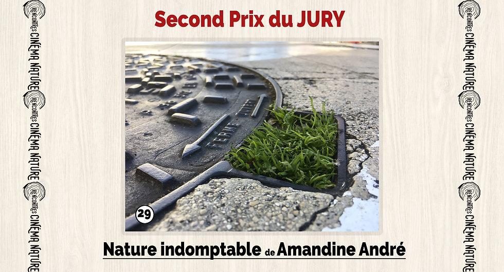 2ème_prix_jury.jpg