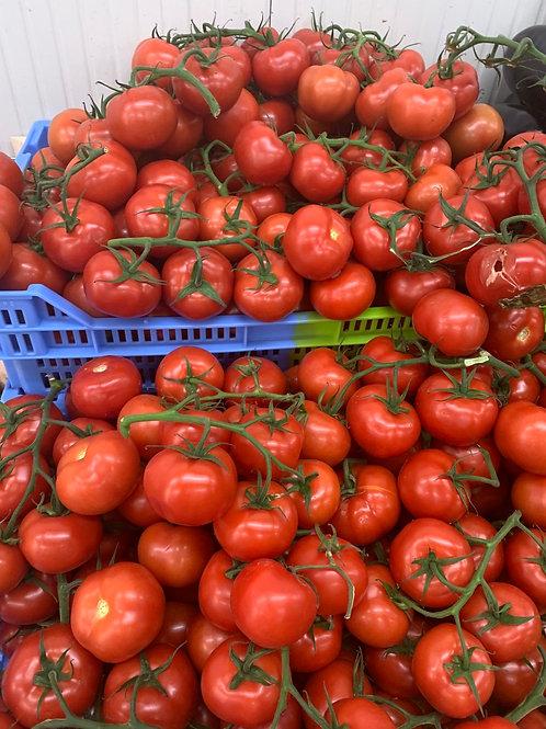 Tomates de notre production