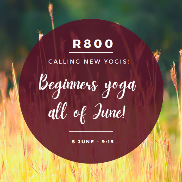 Introduction to yoga - Series 1