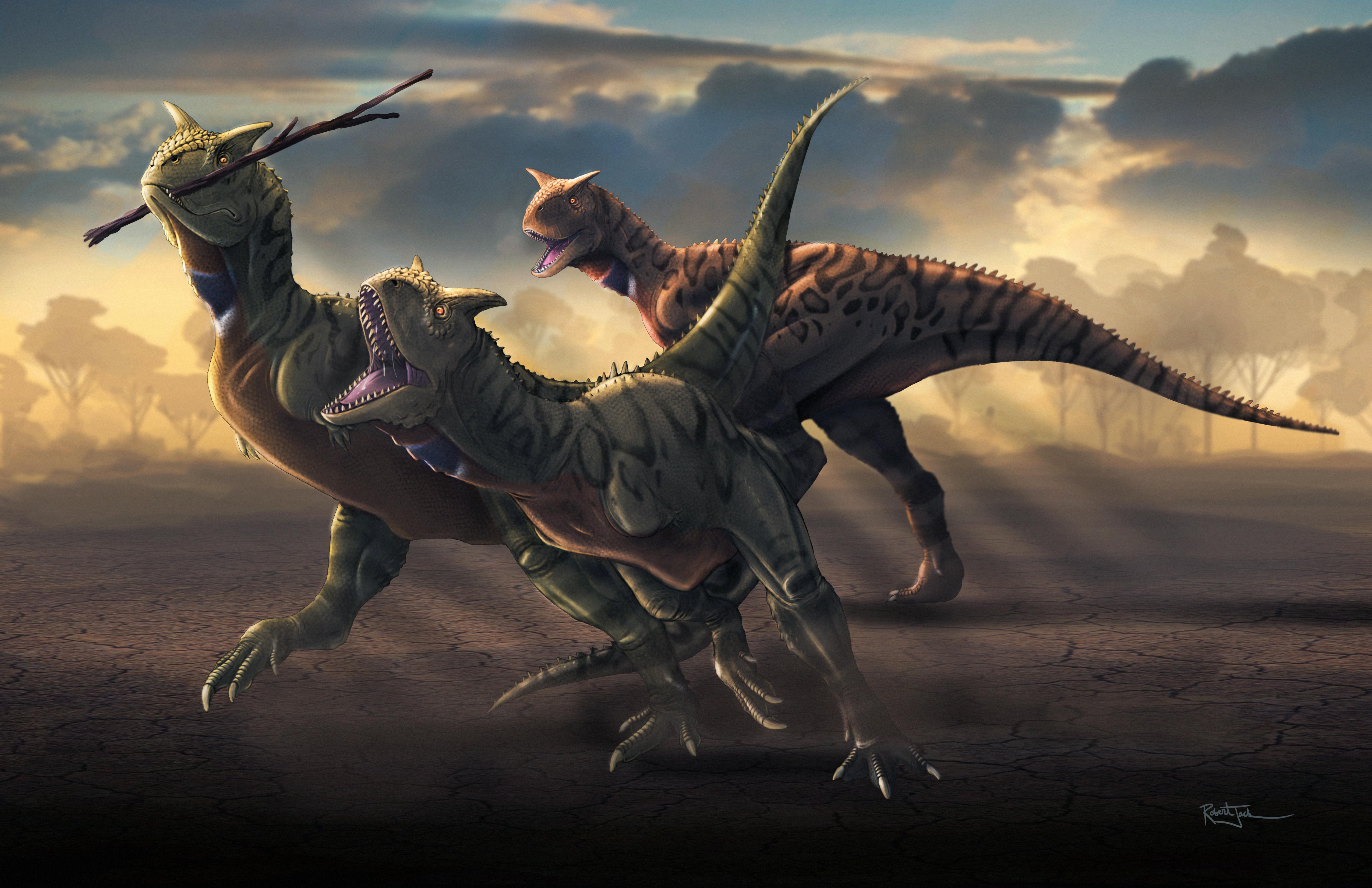 Carnotaurus Keepaway