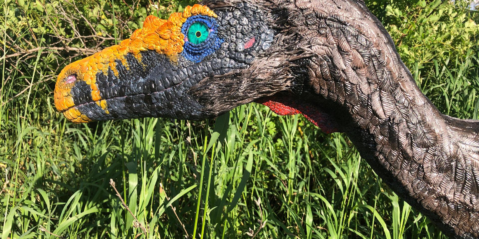 Velociraptor 1:1 Scale