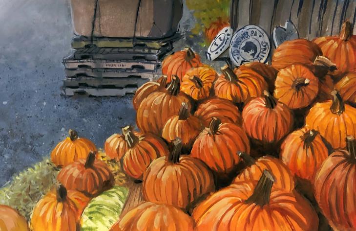 Roadside Pumpkin Patch