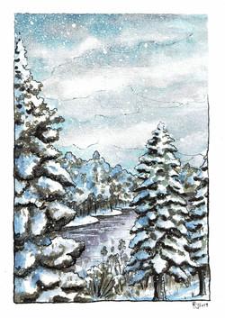 Winter Pines #1