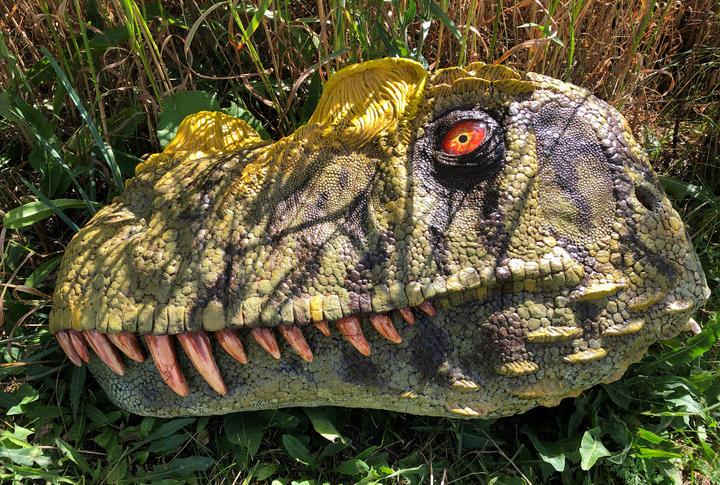 Ceratosaurus 1:1 Scale