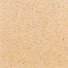 105-albicocca.jpg