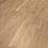 Thumbnail: ROBLE AHUMADO