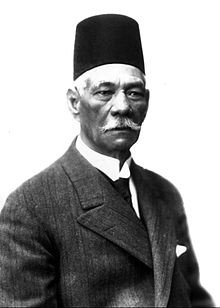 قومية احمد شوقي