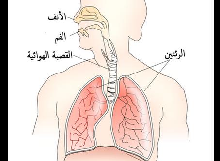 التنفس الخلوي