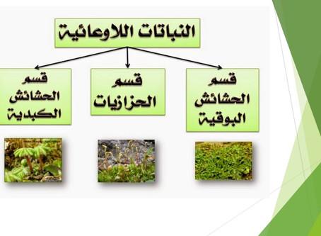 نباتات اللاوعائية والوعائية