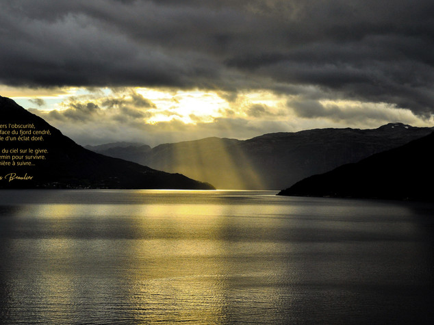 Fjord d'or