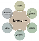 Taxo page image-asset.png
