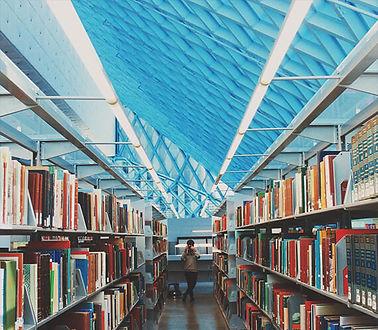 Dema page library.jpg