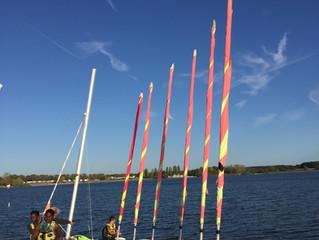 Bison futé annonce un chassé-croisé sur le lac du Der