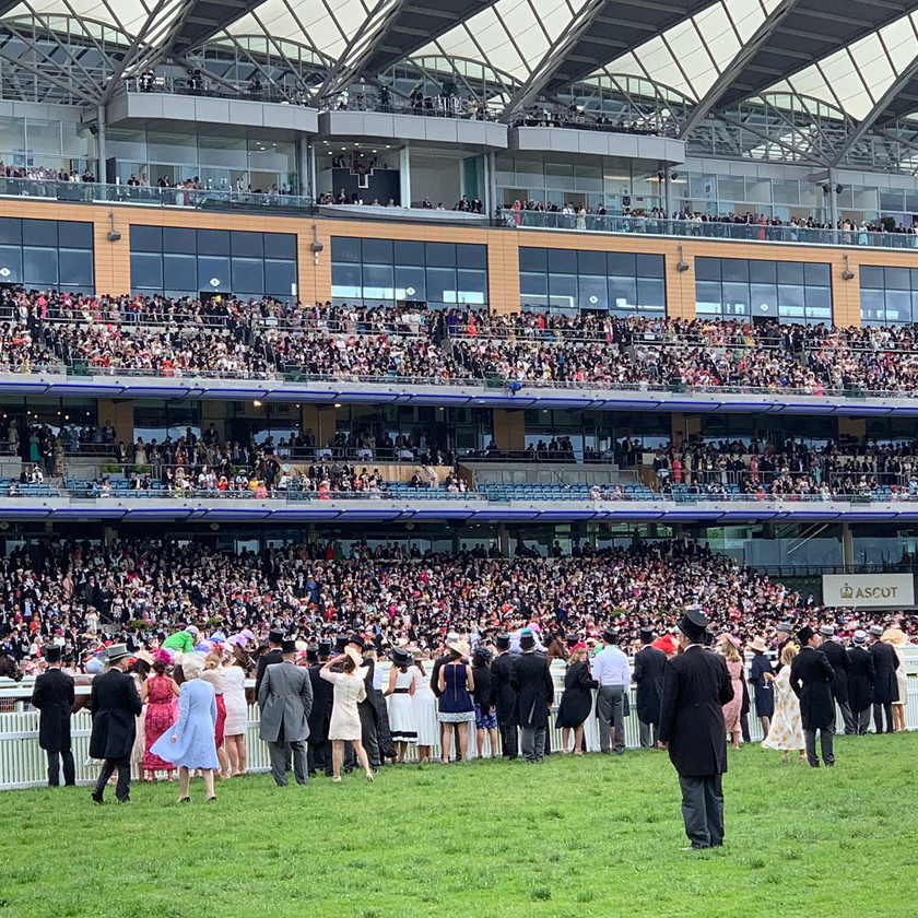 Royal Ascot stands