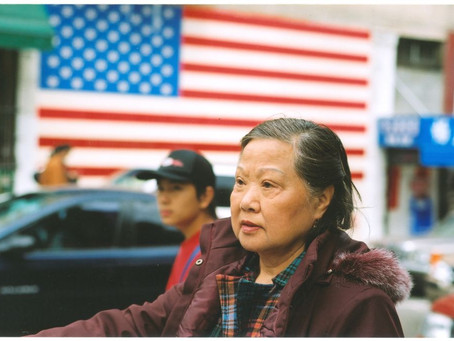 Asian-American: Immigrant vs. Nonimmigrant