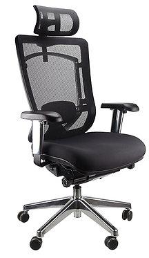 Zinnea Executive Office Chair High Back