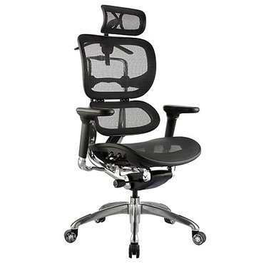Ergo Mesh Office Chair High Back
