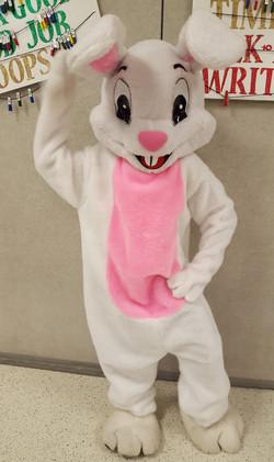 Bunny #2_edited.jpg