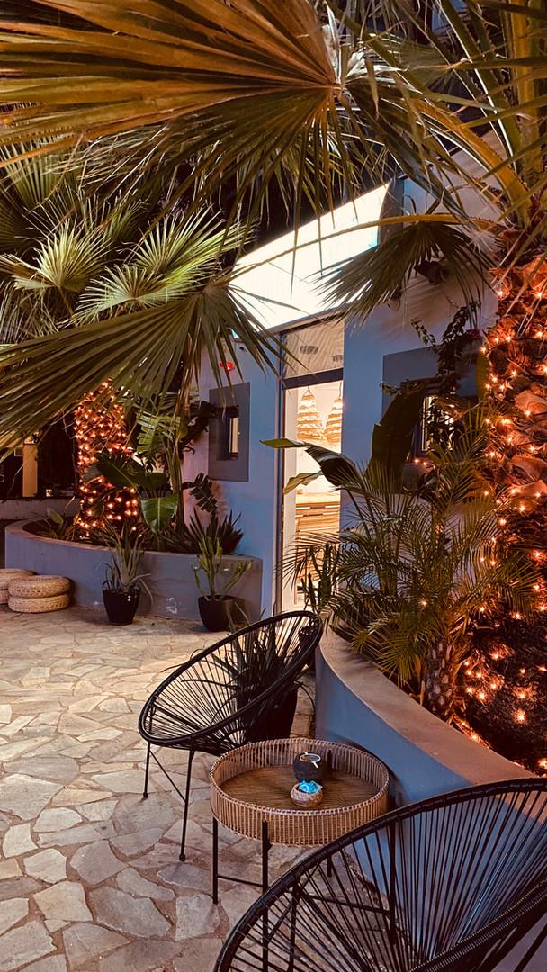 palms yard city